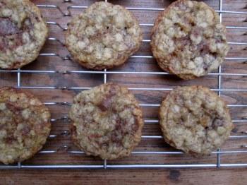 Oatmeal Cookies 027-001